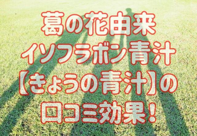 葛の花由来イソフラボン青汁【きょうの青汁】の 口コミ効果!
