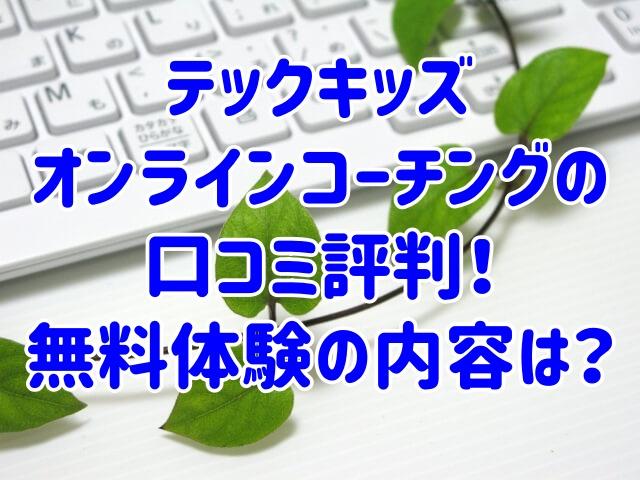 テックキッズオンラインコーチングの口コミ評判!無料体験の内容は?